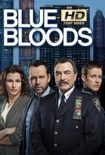 Blue Bloods 8x8