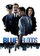 Blue Bloods 8x9